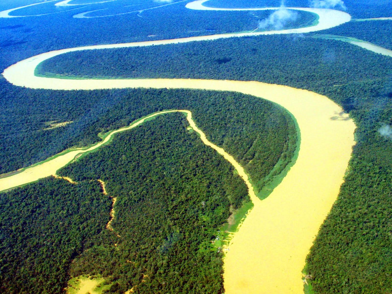 Diversidade biológica na Amazônia