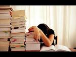 librarian :)