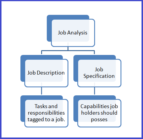 understanding job analysis Understanding job analysis information i am guessing but i believe it means understand how to do your job and understand how others should be doing theirs and do it even if they mean something else it probably is just a straight forward concept and saying it in a round about way to make it sound really important.