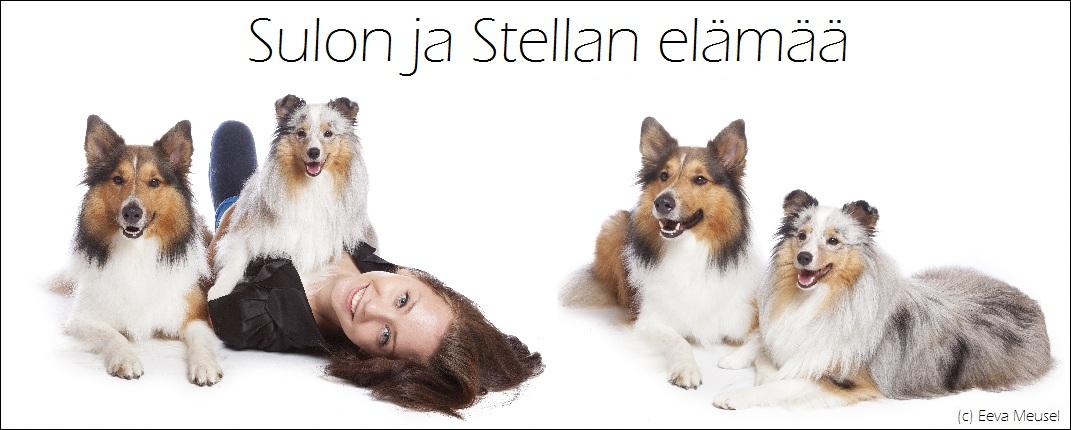 Sulon ja Stellan elämää