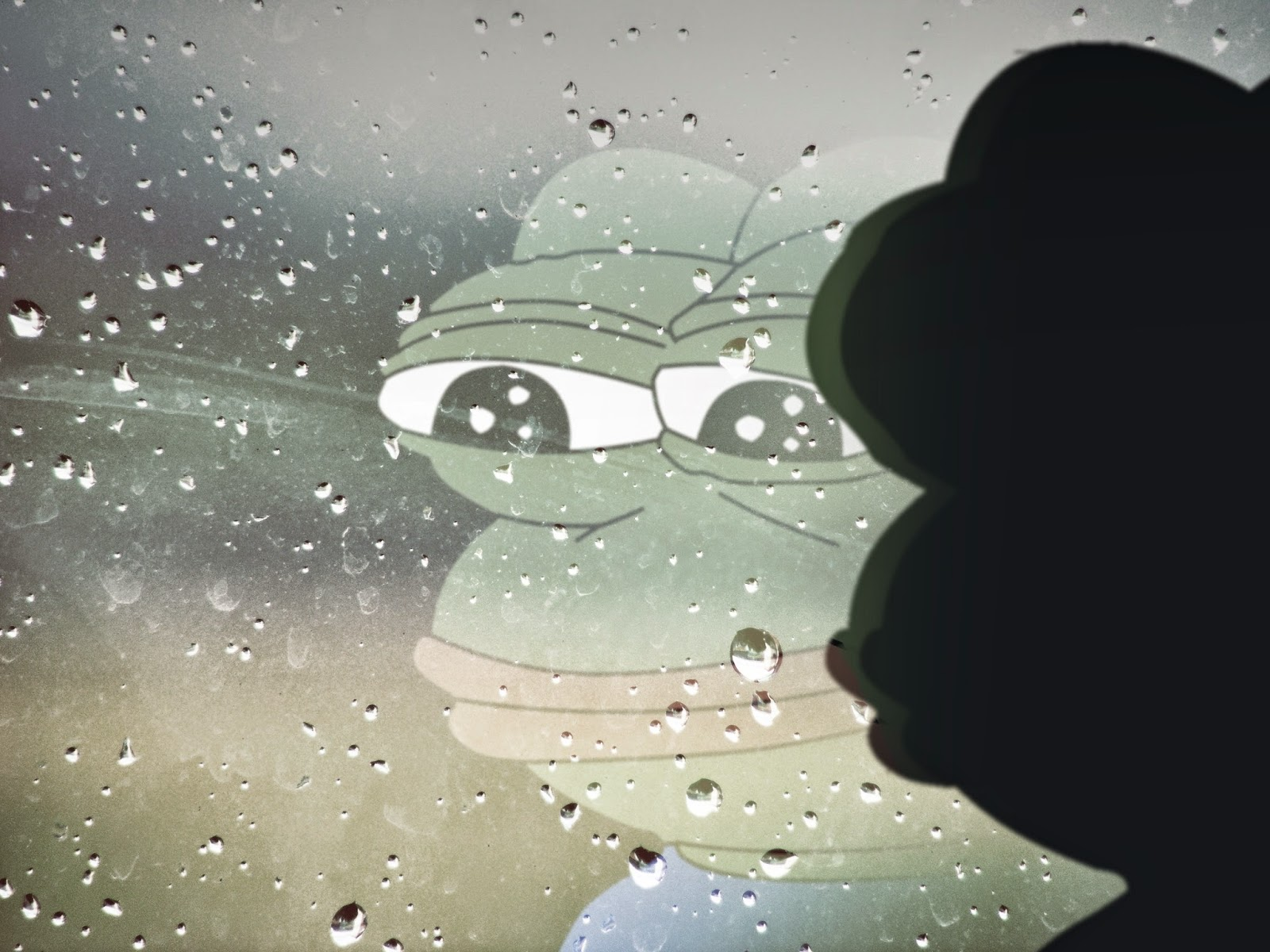 Kermit looking out the rainy window