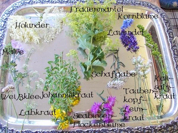 unkrautgourmet pflanzen essen rezepte und mehr essbare bl ten f r den salat denn das. Black Bedroom Furniture Sets. Home Design Ideas