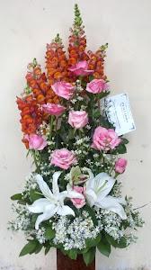 Bunga Meja Segar