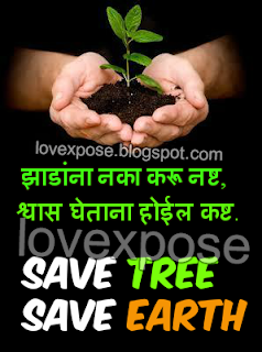 an essay on preserving trees We can save forests stopping the cutting of trees (stop deforestation) short essay on save forests short essay on importance of forests in india.