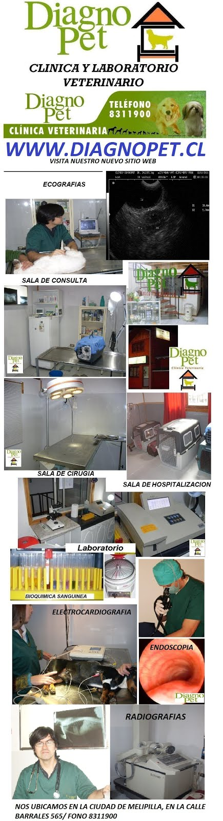 CLINICA Y LABORATORIO VETERINARIO DIAGNOPET  de Melipilla
