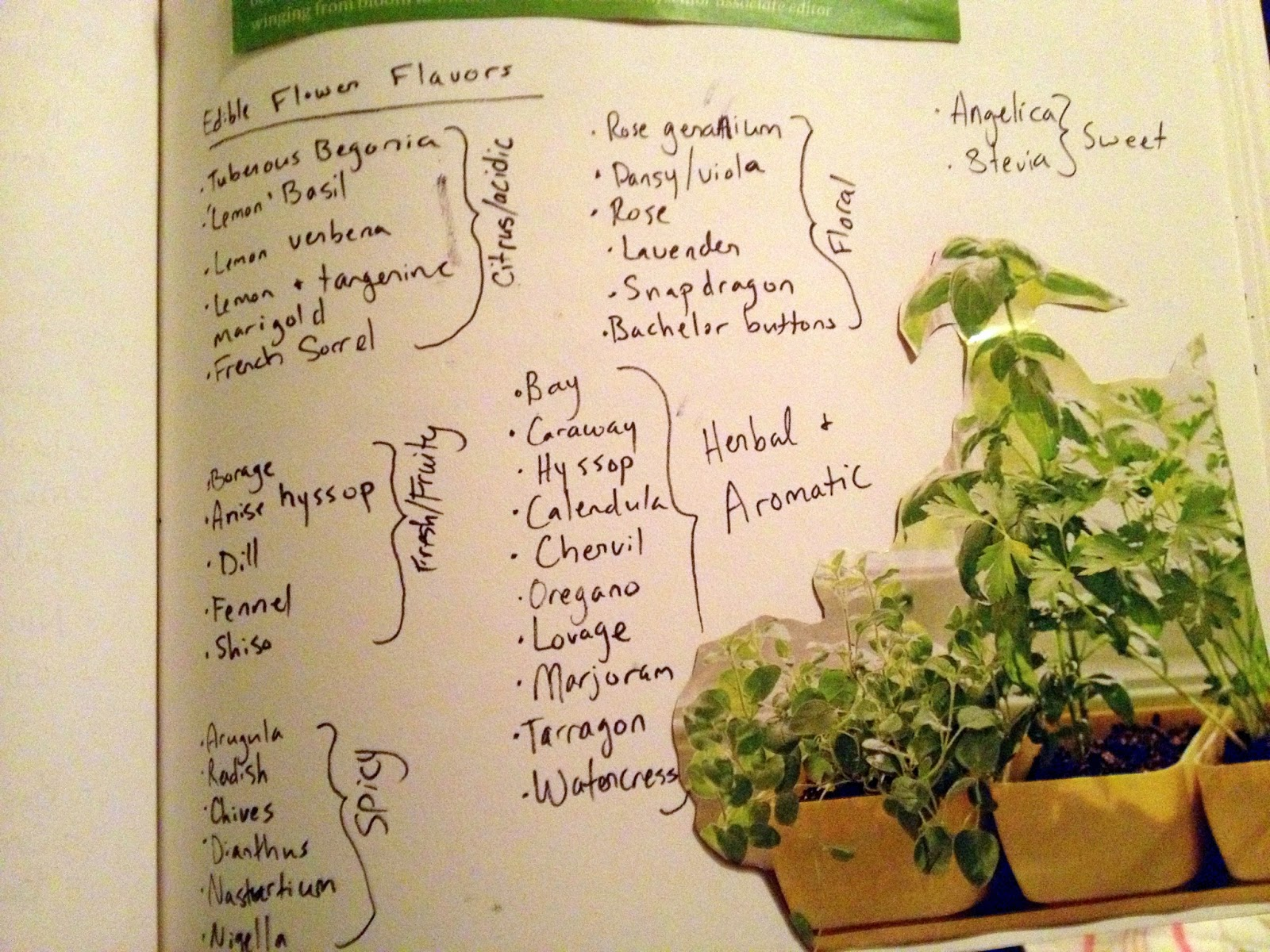 im definitely not the first person to think of keeping a journal for gardening