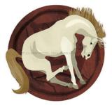 horoscop chinezesc zodia cal 2013