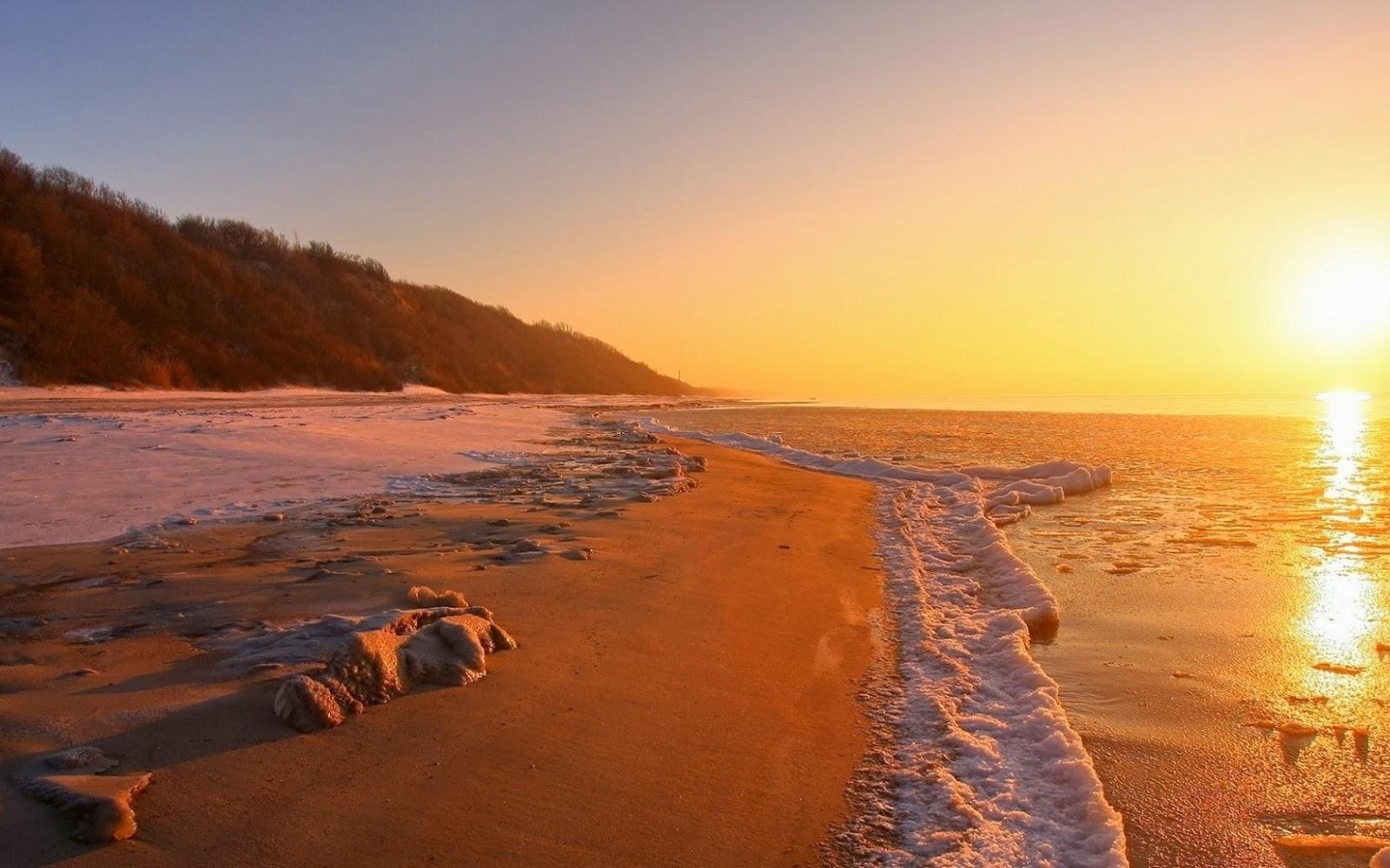 Puesta de sol en el océano con plantas en la orilla