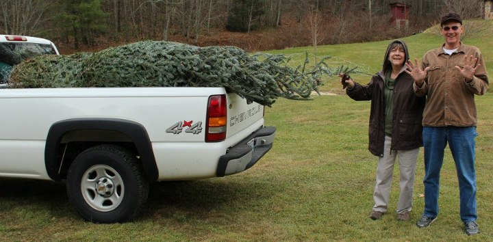 amps and mimi found their perfect tree at the farm in north carolina can we say 10 yesthats right their christmas tree only cost them 10 and it