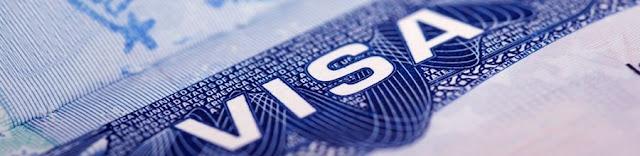 visa consultant