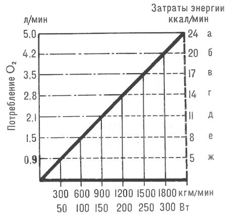 ca9313462a33 Зависимость потребления кислорода и расхода энергии от скорости бега  а -  20км ч, б - 16км ч, в - 13км ч, г - 11км ч, д - 9км ч ходьбы  е - 7км ч, ...
