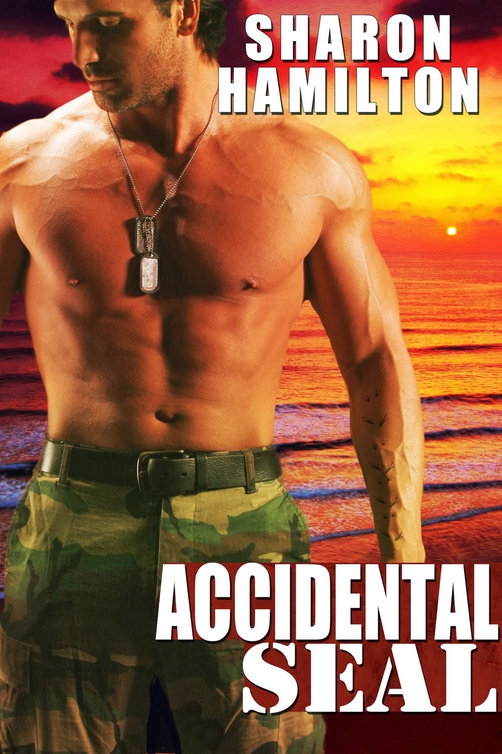 Accidental SEAL on Audio Now!