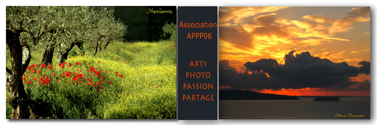 Arts-Photo-Passion-Partage