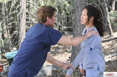 sandra oh and eric dane in the season 8 finale of grey's anatomy