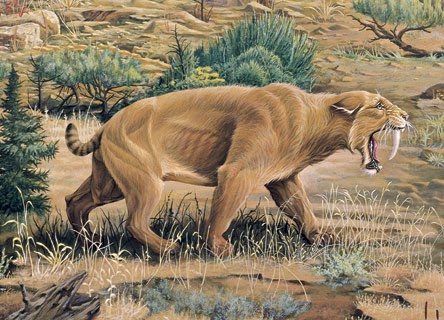 نتيجة بحث الصور عن ثدييات العصر الجليدى