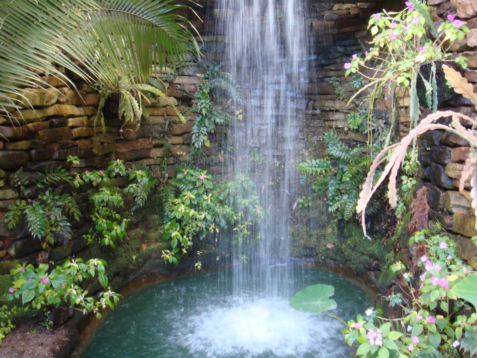 Little pitbull garden callaway gardens pine mountain ga - Callaway gardens pine mountain georgia ...