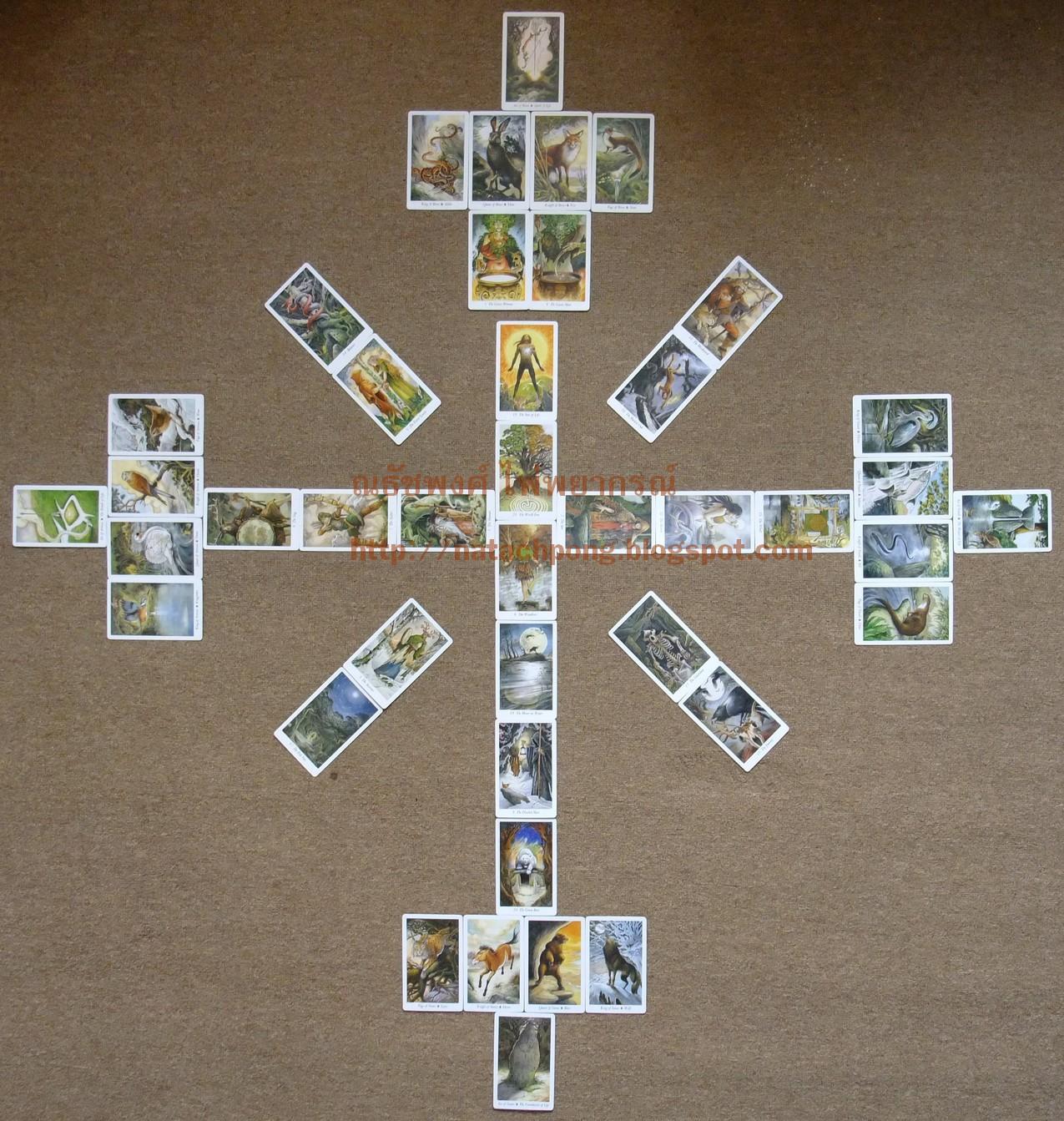 ไพ่ทาโรต์ เรียงไพ่ ตำแหน่งไพ่ วางไพ่ Wildwood Tarot Wheel of the Year Major Arcana Ace Court Cards Spread