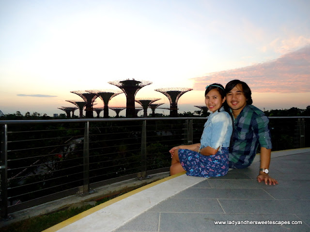 In Singapore's Gardens by the Bay Observation Deck