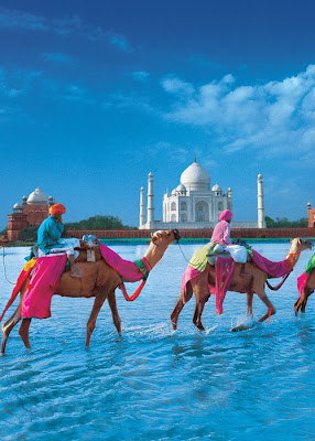camels, colorful, india, mosque, sunny