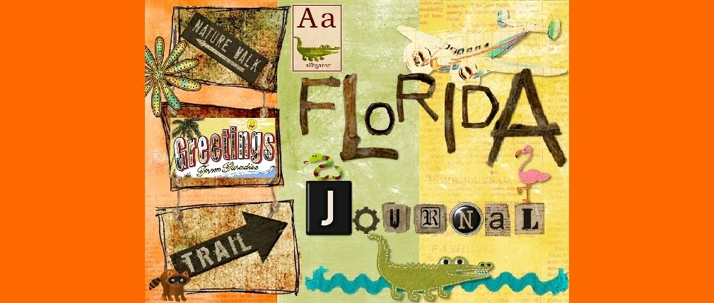 A Florida Journal