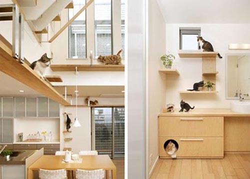 Namo interjeras, pritaikytas ne tik žmonėms, bet ir katėms