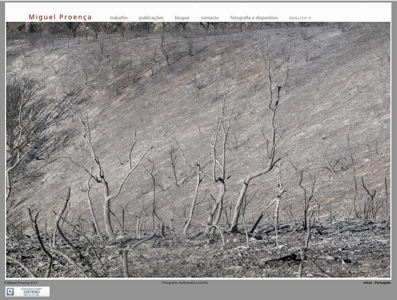 home page miguel-proença.com