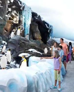 Busch Gardens Tampa Bay (Best Honeymoon Destinations In USA) 7