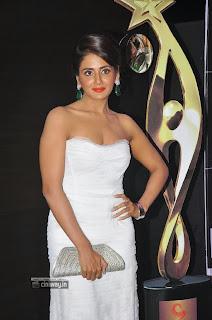 Parul-Gulati-at-SIIMA-Awards-2013