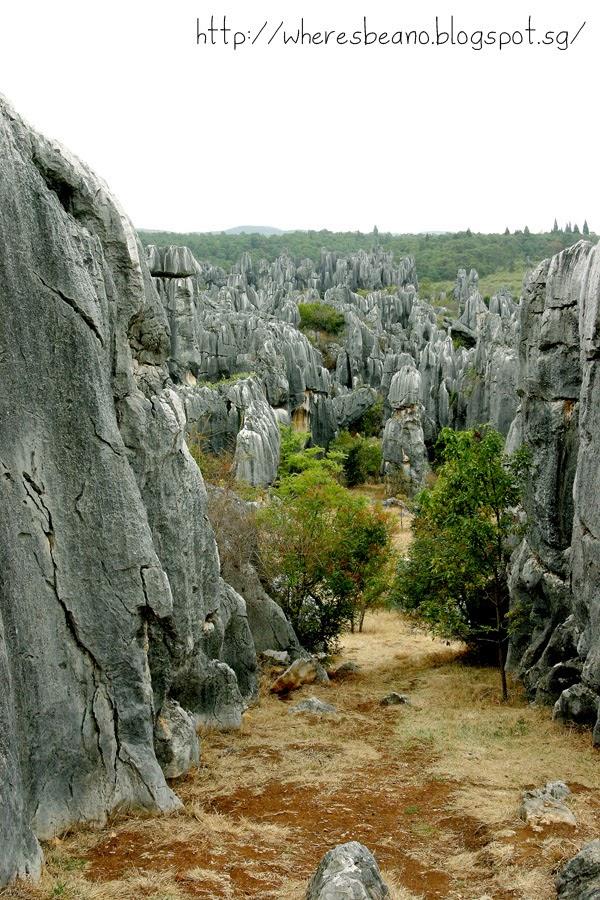 kunming stone forest