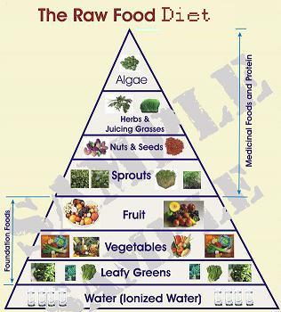 Raw Food Recipes Paul Nison