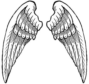 Asas de anjo para fazer apresentação de natal, etc...