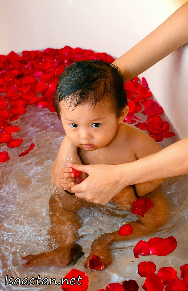 Baby Martin swimming with the roses