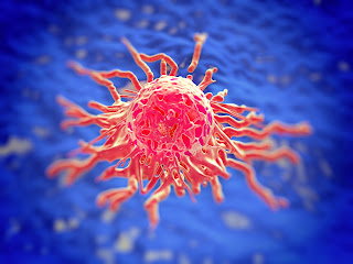 Turncoat Protein Regulates Sensitivity Of Breast Cancer To Drug