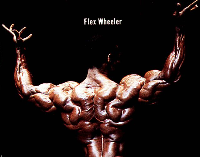 Mr Olympia USA  Flex wheeler Flex Wheeler Wallpapers flex wheeler