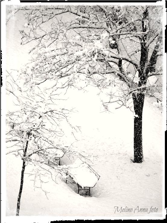 Neve sulla panchina