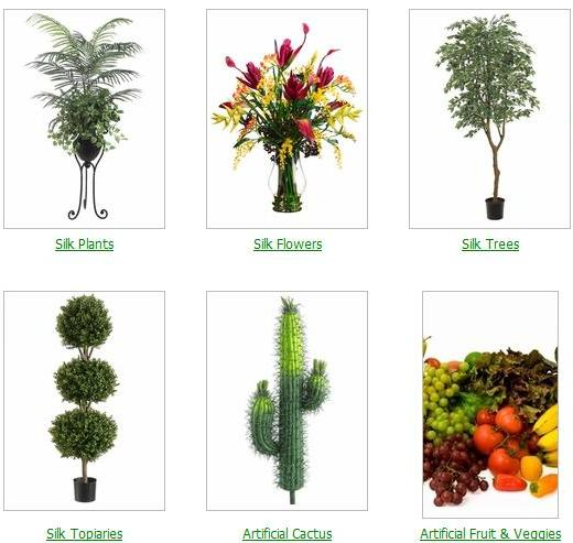 Image gallery different plants for Garden trees types