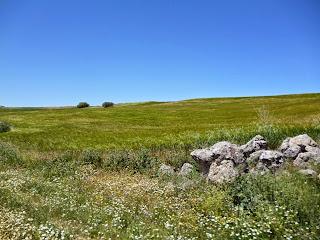 Campos de cultivo a lo largo del GR-163