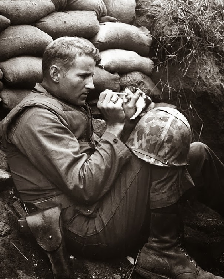 When this soldier, in the middle of life or death situations, stopped to take care of a kitty who wandered in the area.