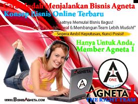 Konsep Baru Berbisnis Online bersama Agneta