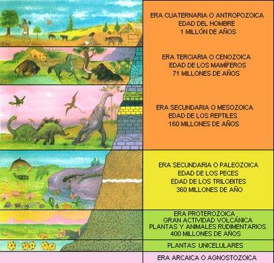 Blog para maestros y estudiantes las eras geologicas for Cuales son las caracteristicas de un mural