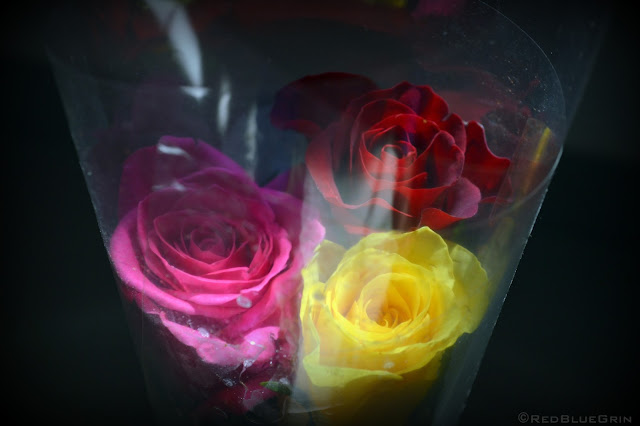 A small bouquet of red, yellow and pink rose.
