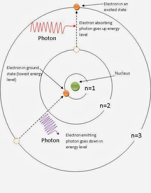 Hydrogen Atom In The Bohr Model Of The Hydrogen Atom What Is Quantized