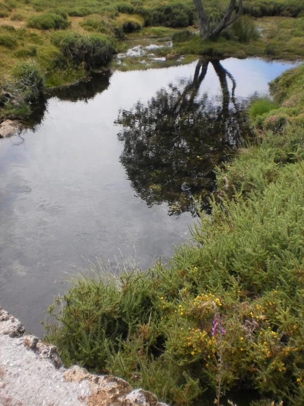 Lago de água Limpida