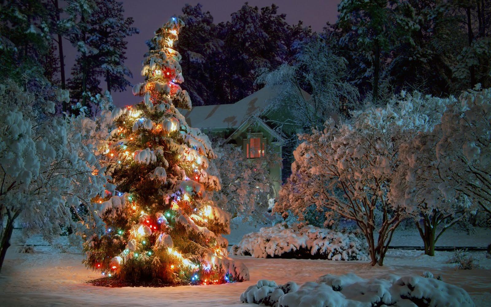 Paisaje nevado con Árbol de Navidad (Wallpaper)