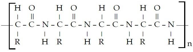 Contoh Makromolekul : Polimer, Karbohidrat, Lemak, Protein, Plastik