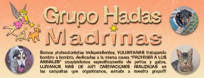 Grupo Hadas Madrinas