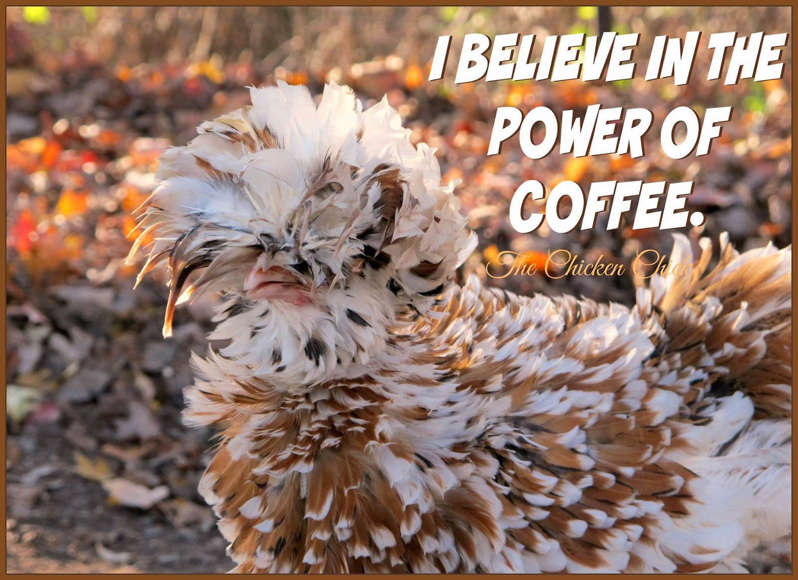 I believe in the power of coffee.
