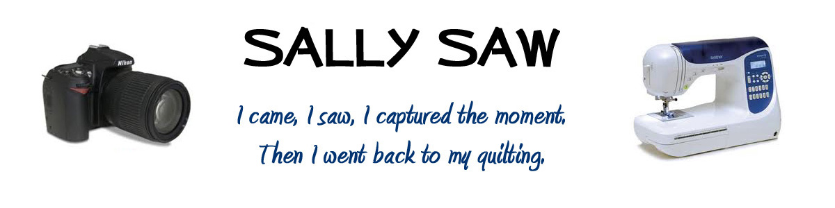 Sally Saw...