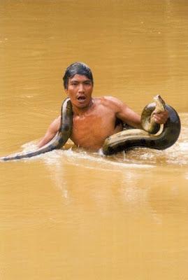 Cuáles son las regiones más importantes de Ecuador por su Biodiversidad