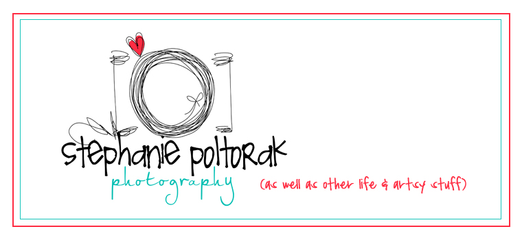 stephanie poltorak photography & design